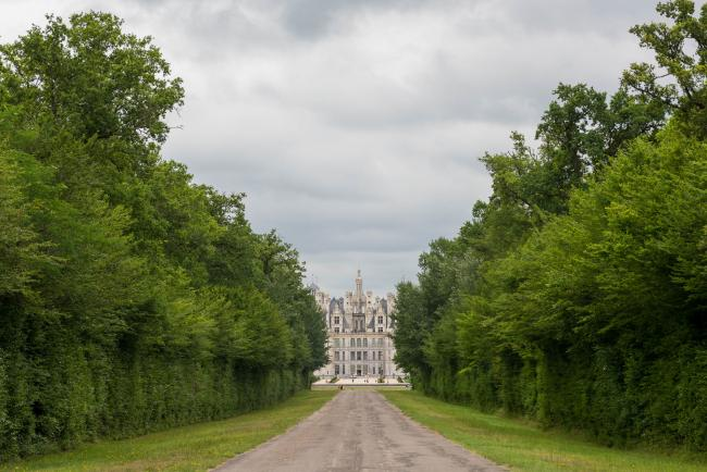 An avenue to Chambord Castle