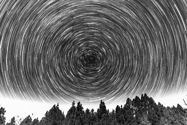 Startrails over trees and clouds in black and white