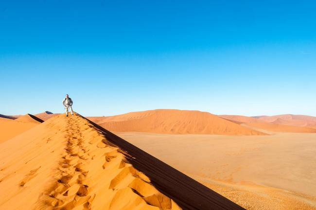 The dune landscape around Dune 45 in the Namib
