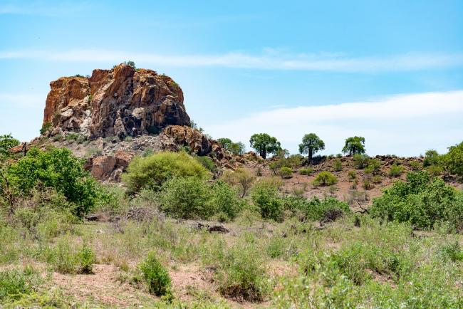 The Mapungubwe hill